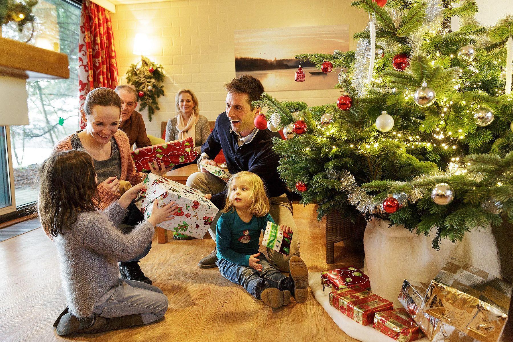 Bon plan Vacances de Noël : votre cottage à partir de 449€