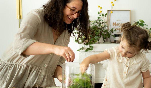 Créer son propre terrarium à la maison
