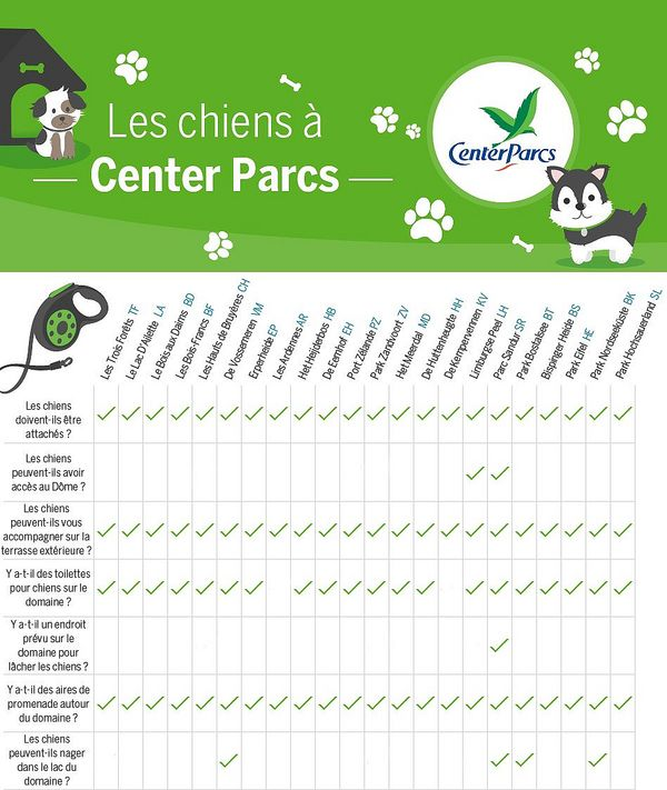 Chiens infographic