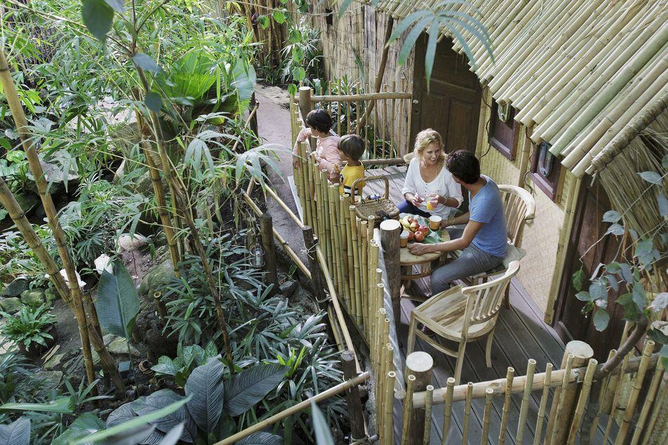 Jungle Cabana