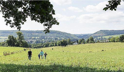 De chouettes excursions culturelles dans les Ardennes
