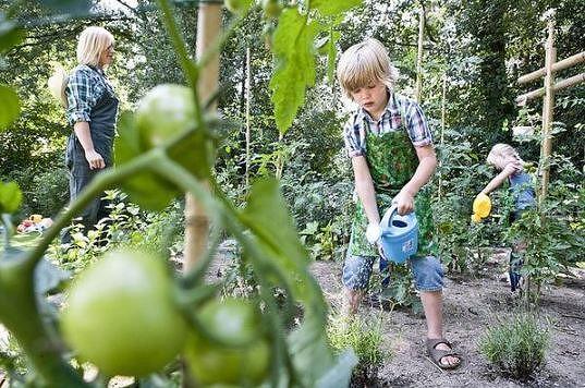 Le jardinage avec les enfants: amusant et instructif !