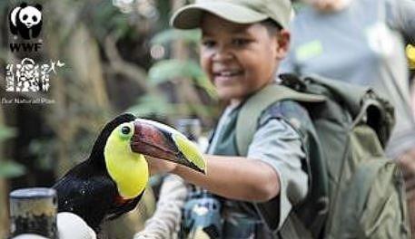 Le Fonds mondial pour la nature et Center Parcs travaillent main dans la main afin d'assurer l'harmonie entre l'homme et la nature