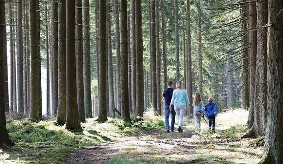 5 promenades en famille à proximité du domaine Center Parcs Les Ardennes