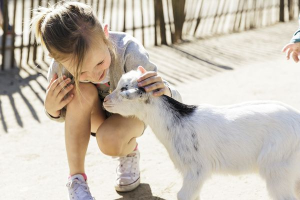 Pasgeboren dieren op onze Kinderboerderijen!