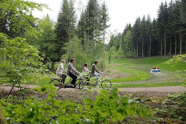 fietsvakantie vogezen