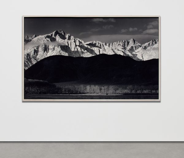 Adams' large-scale photographs both preceded and predicted contemporary trends in the medium.