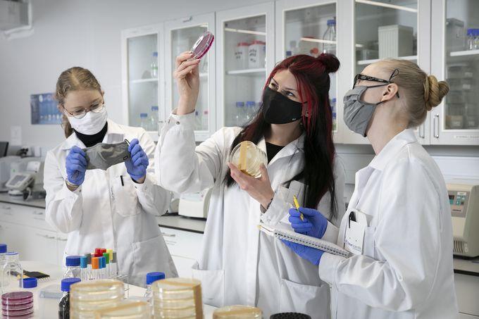 työskentelyä laboratoriossa