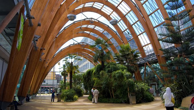 Inside of Sheffield City Centre's Winter Gardens giant greenhouse with view of tropical plants