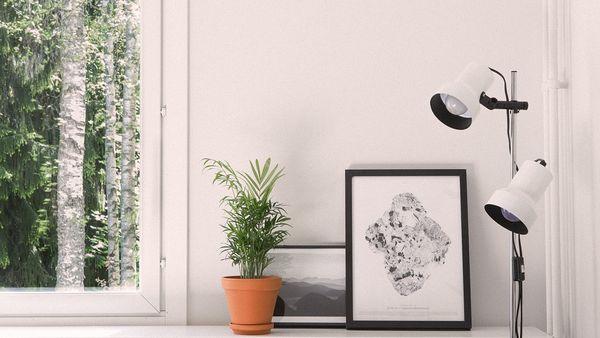 Pienen kodin ikkunalaudalla soma tauluasetelma ja huonekasvi