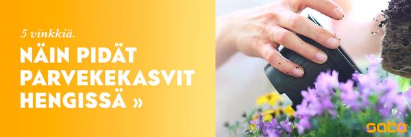 Linkki parvekekasvien hoito-ohjeisiin | SATO